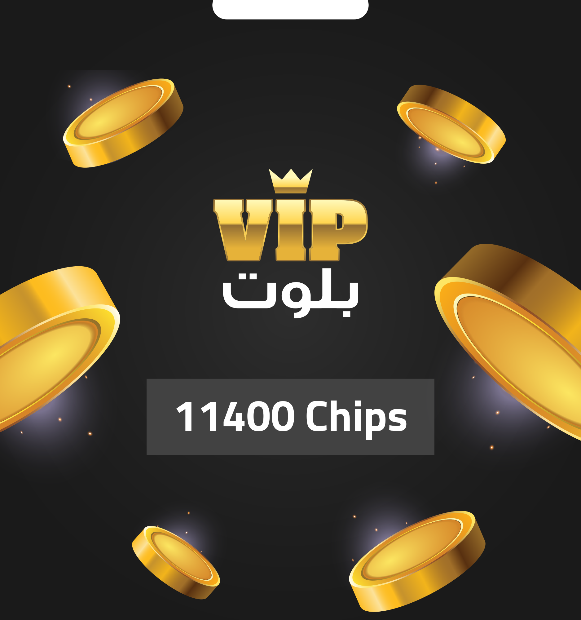 VIP BALOOT 11400 CHIPS - Email Delivery